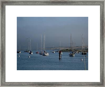 Morro Bay Boats Framed Print by Kathy Long