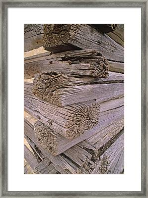 Morticed Joints On An Abandonded Log Framed Print by Gordon Wiltsie