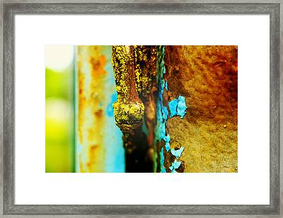 Moss And Rust II Framed Print by Toni Hopper