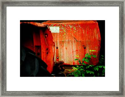Moss And Rust V Framed Print by Toni Hopper