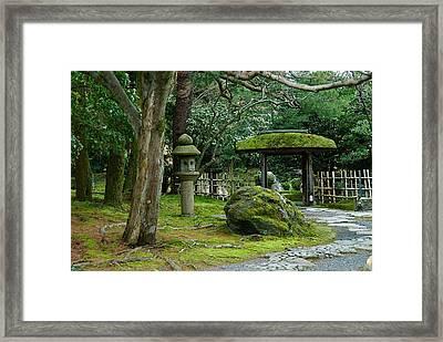 Moss Covered Park Framed Print