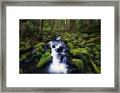 Moss-covered Rocks In Creek With Small Framed Print