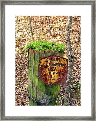 Framed Print featuring the pyrography Moss Hair by Paul Mashburn