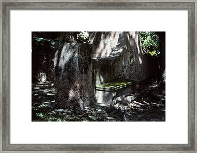 Moss On A Bench Framed Print
