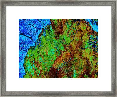 Moss On Rock Framed Print by Helen Carson
