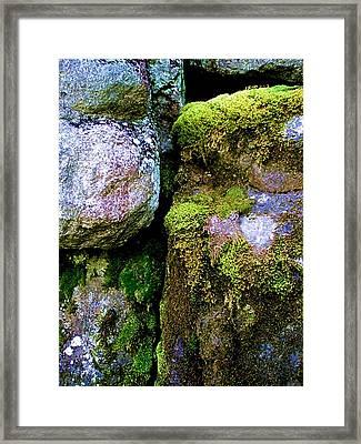 Moss On Rocks Framed Print by Bridget Johnson