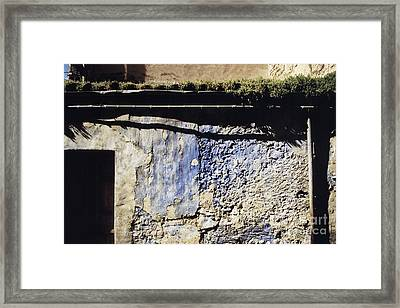 Moss On The Roof Framed Print