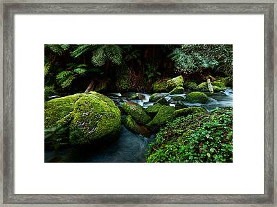 Moss Rocks Framed Print by Heather Thorning