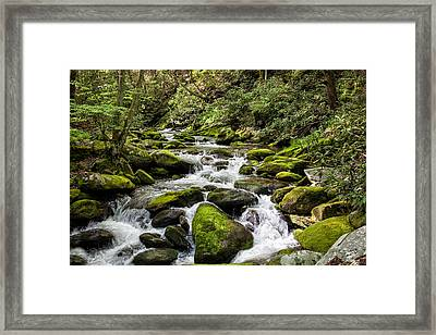 Mossy Creek Framed Print