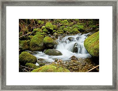 Mossy Greek Framed Print by Christopher Kimmel