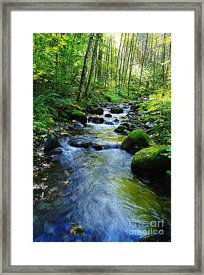 Mossy Rocks And Water   Framed Print