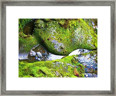 Framed Print featuring the photograph Mossy Rocks And Water Reflections by Michele Penner