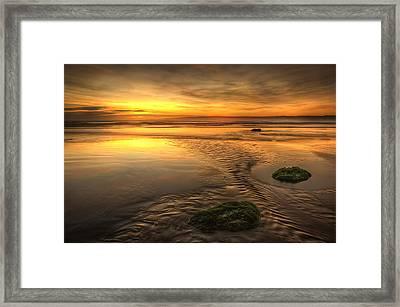 Mossy Rocks Framed Print by Svetlana Sewell
