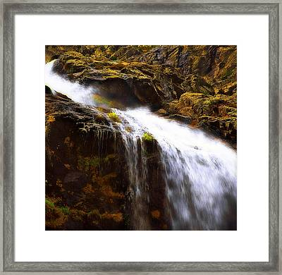 Mossy Rocks Framed Print
