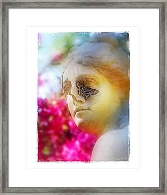 Moth On Statue Framed Print by Judi Bagwell