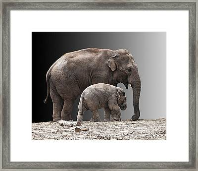 Mother And Baby Framed Print by Sheila Laurens
