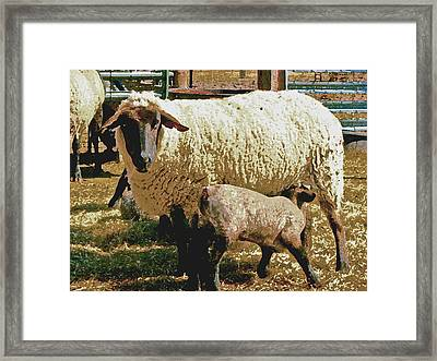 Framed Print featuring the photograph Mother And Child Iv by William Fields