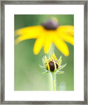Mother And Daughter Framed Print by Neal Blizzard