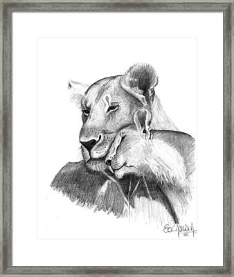 Mother And The Lion Baby Framed Print by Eduardo Crowder