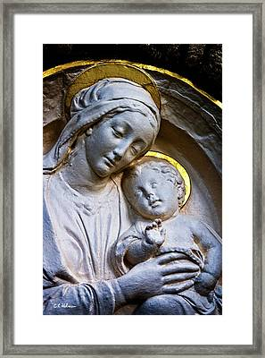 Mother And The Son Framed Print by Christopher Holmes