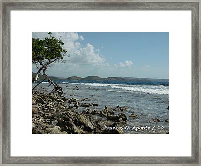 Mother Nature Framed Print by Frances G Aponte