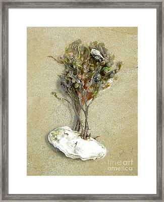 Mother Nature... The Only True Artist Framed Print