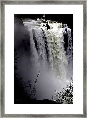 Mother Nature's Roar Framed Print