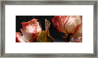 Mother's Roses Framed Print