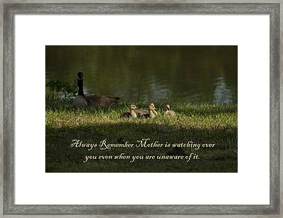 Mother's Watchful Eye Framed Print by Kathy Clark