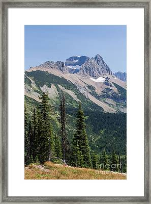 Framed Print featuring the photograph Mount Gould And Subalpine Fir by Katie LaSalle-Lowery