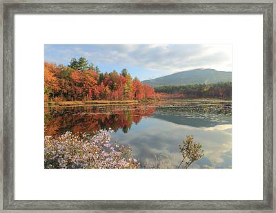 Mount Monadnock Foliage And Asters Framed Print by John Burk