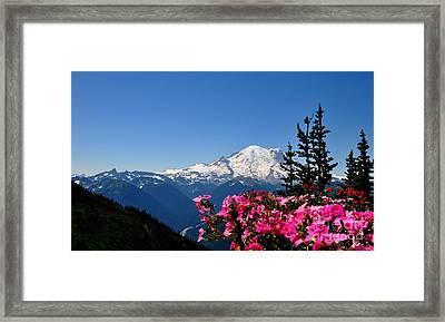 Mount Rainier Seen From Crystal Mountain Summit  2 Framed Print