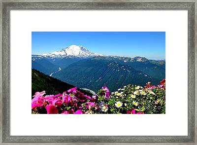 Mount Rainier Seen From Crystal Mountain Summit Framed Print by Tanya  Searcy