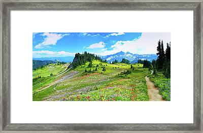 Mount Rainier Summer Colors Framed Print by Feng Wei Photography