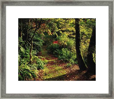 Mount Stewart, Co Down, Ireland Framed Print by The Irish Image Collection