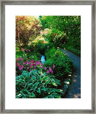 Mount Usher Gardens, Co Wicklow Framed Print by The Irish Image Collection