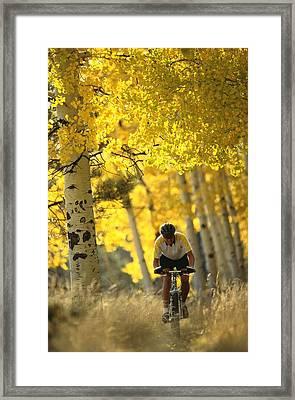 Mountain Biking Through A Grove Framed Print by Bill Hatcher