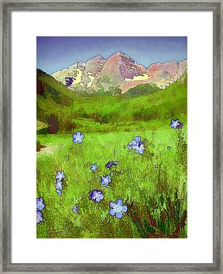 Mountain Flowersketch Framed Print