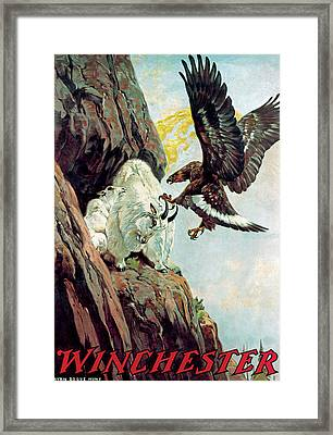 Mountain Goat And Eagle Framed Print by Lynn Bogue Hunt