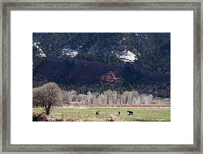 Framed Print featuring the photograph Mountain Pasture by Lorraine Devon Wilke