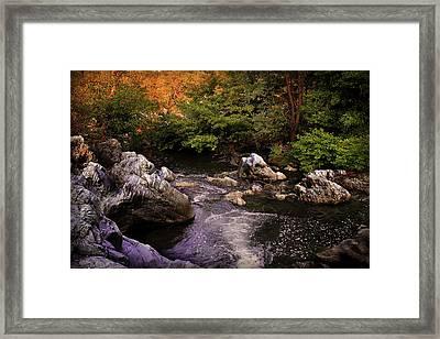 Mountain River With Rocks Framed Print by Radoslav Nedelchev