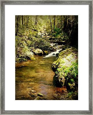 Mountain Stream Framed Print by Cindy Wright
