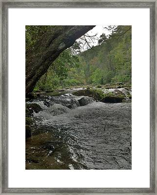 Mountain Stream Framed Print by Janice Spivey