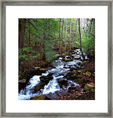 Framed Print featuring the photograph Mountain Stream by Paul Mashburn