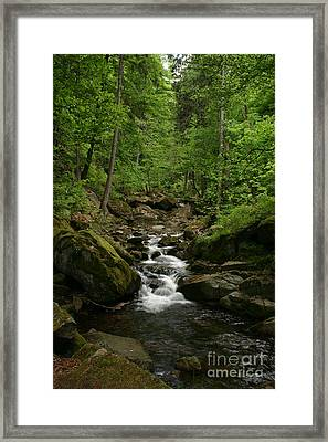Mountain Stream Framed Print by Torsten Dietrich