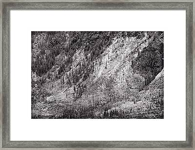 Mountainside At Hayden Valley Yellowstone Framed Print