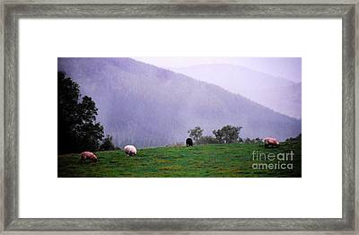 Mourn Mountains Approaching Rain Framed Print by Thomas R Fletcher