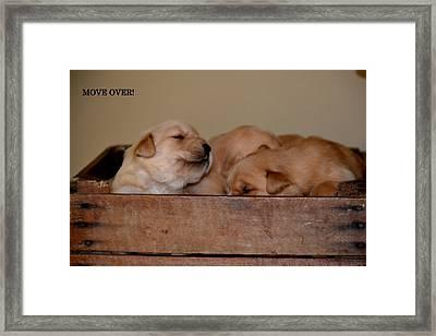 Move Over Framed Print by Brenda Alcorn