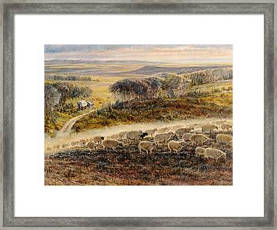 Moving To The Bedground Framed Print