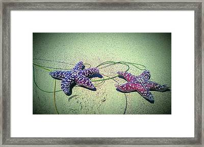 Mr. And Mrs. Starr Framed Print by Genesis Garcia